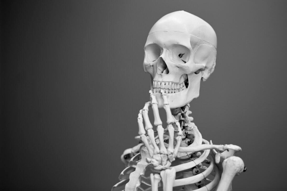 Wenn das Skelett einem zeigt, wo es langgeht